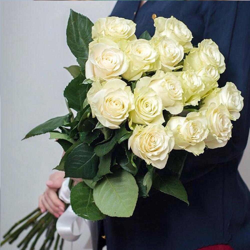 Роза Mondial (от 15 штук)