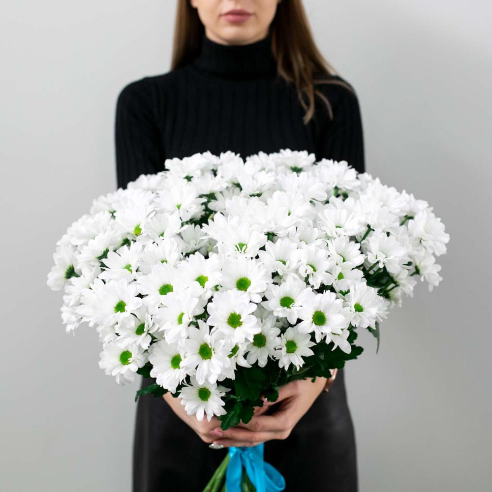 Хризантемы белые  (от 15 штук)
