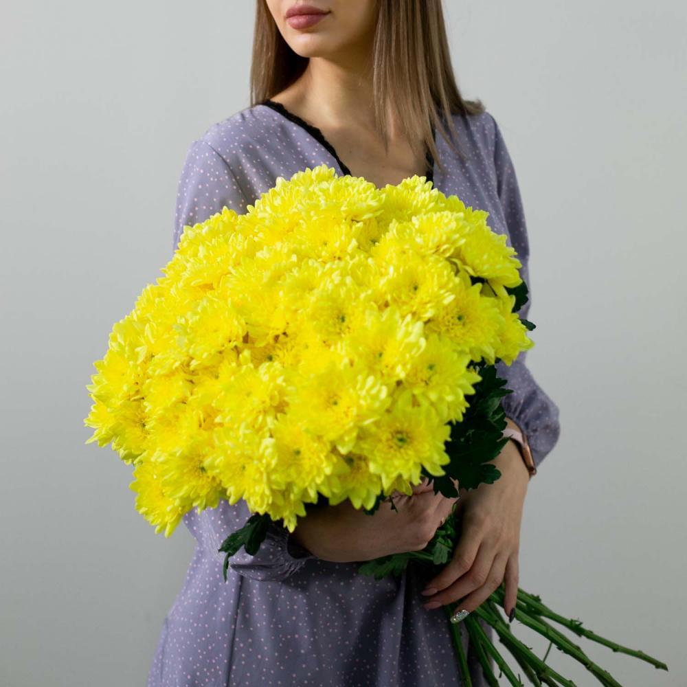 Желтая хризантема (от 15 штук)
